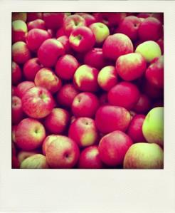 apples-pola