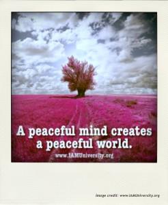 IAMU_PeacefulMind21-pola