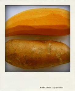 sweetpotato-pola