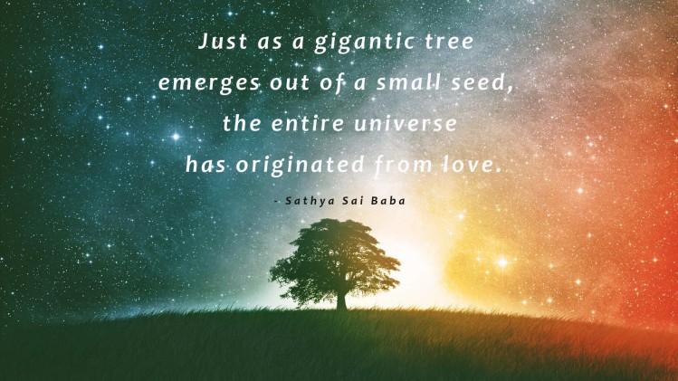 tree_love_Baba